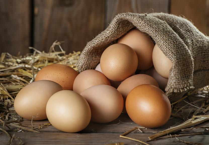 Egg saving nest box