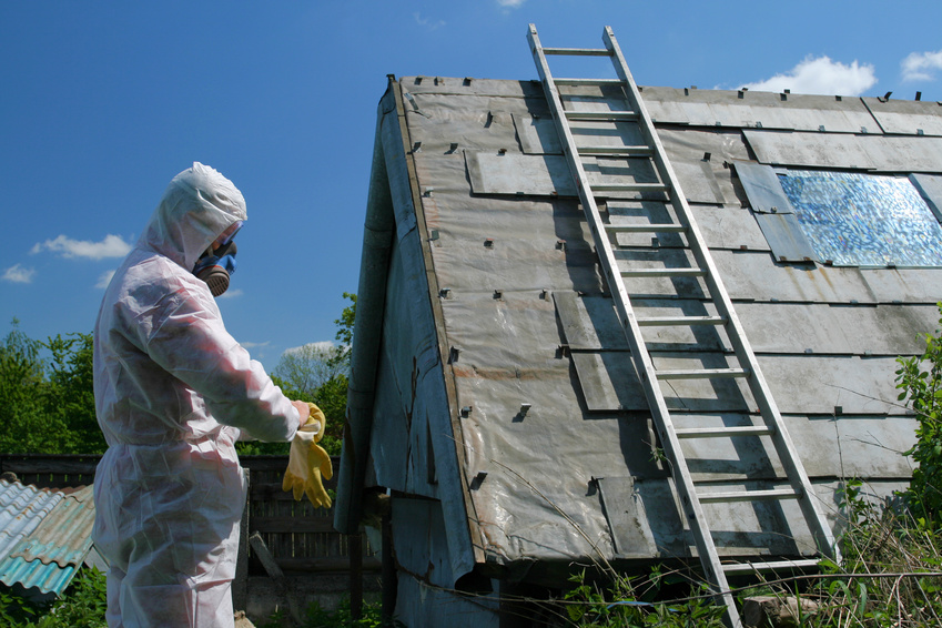 Asbestos removal michigan