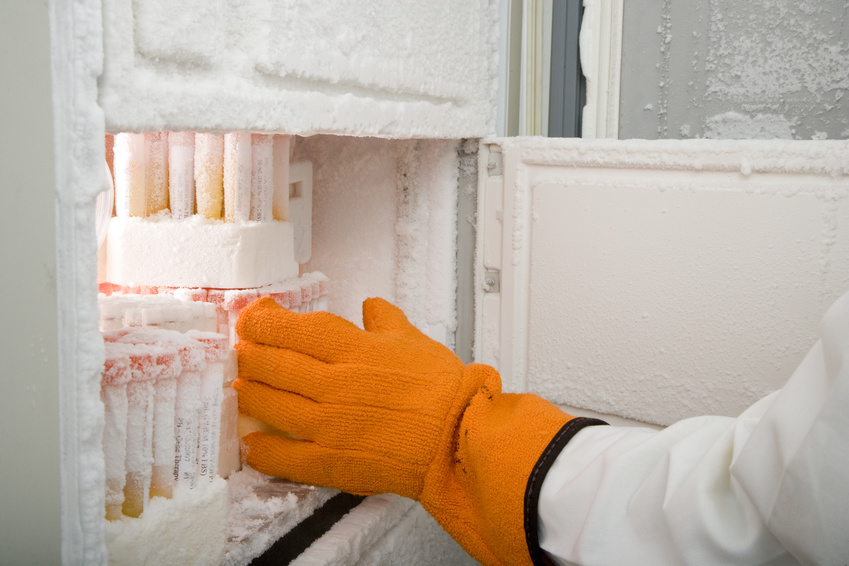 freezer software plays a crucial role in biobanking