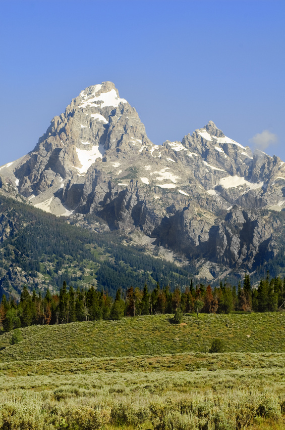 Jackson hole land for sale
