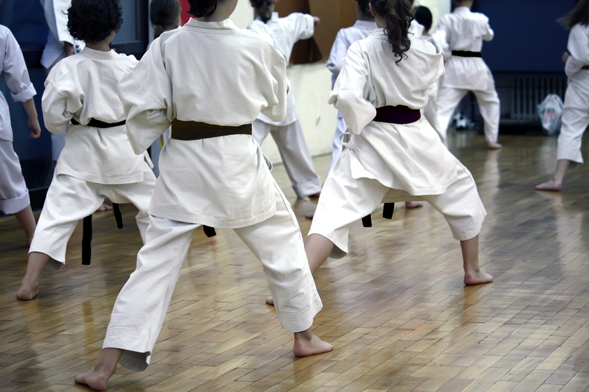 Martial arts training in columbia maryland