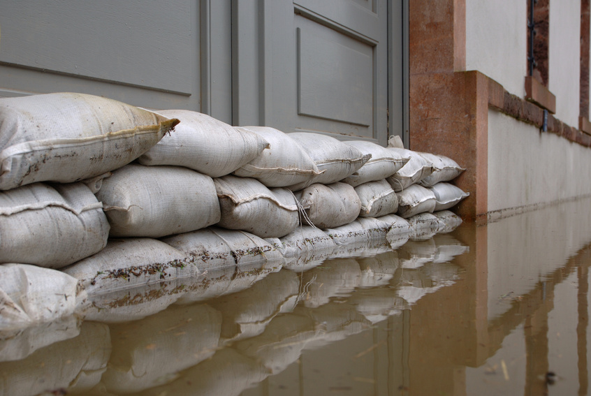 Water damage repair tampa