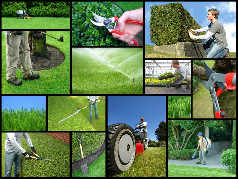 commercial landscaping service - The 7 Deadly Sins That Can Doom Your Commercial Landscaping Design