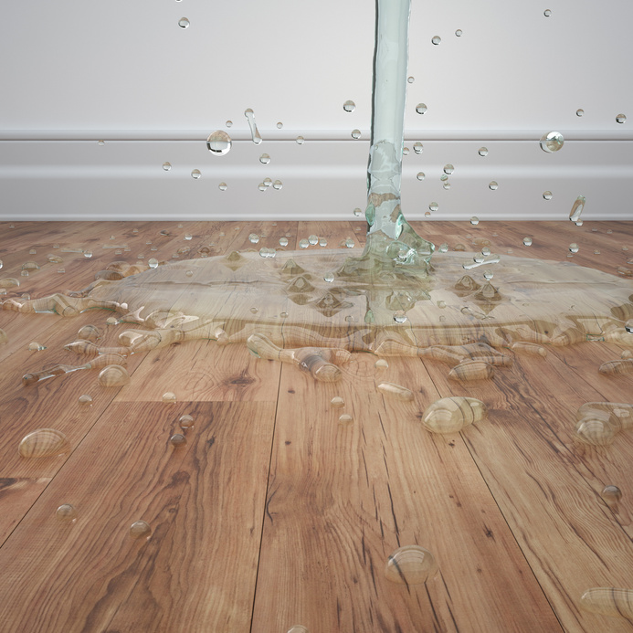 Water damage clearwater