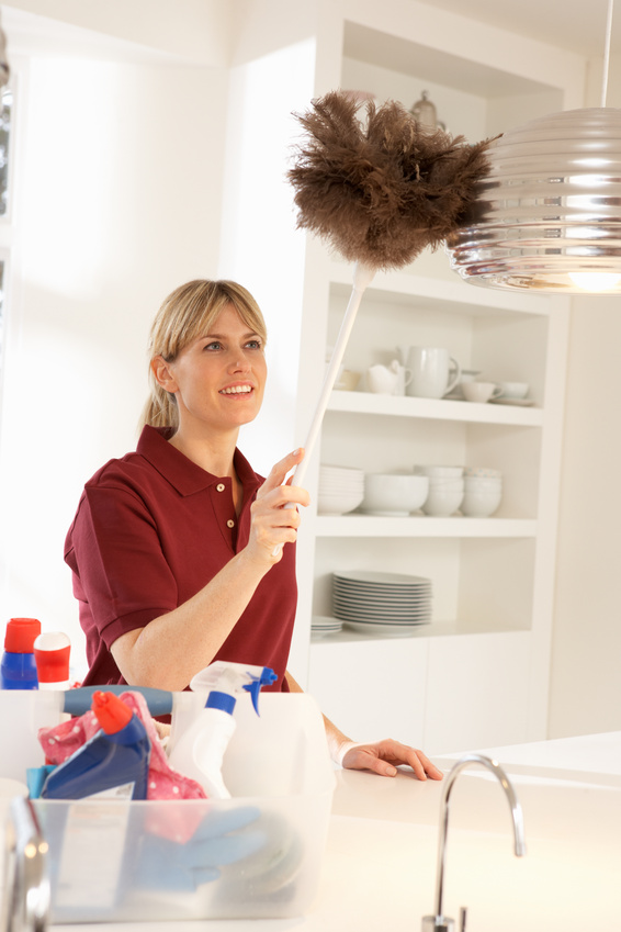 Maid services tampa