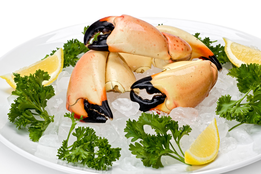 Best stone crab claws