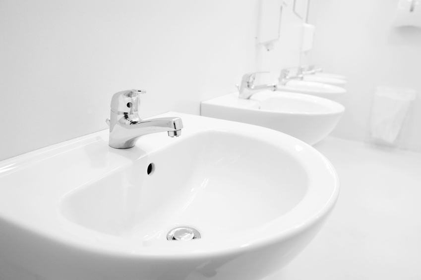 Dual flush toilet reviews