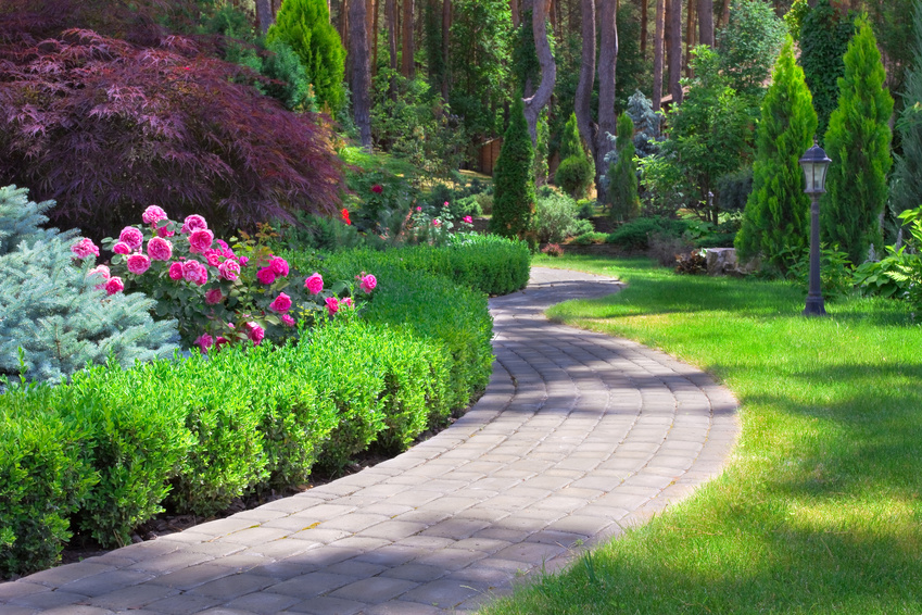 Commercial landscaping tampa fl