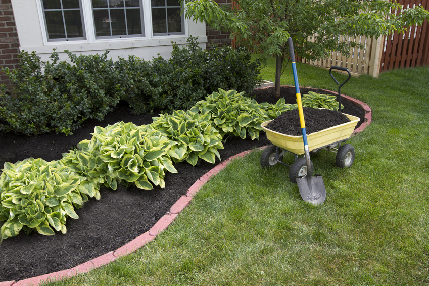 Landscaping in lake bluff