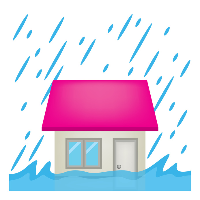 Water damage restoration tampa fl