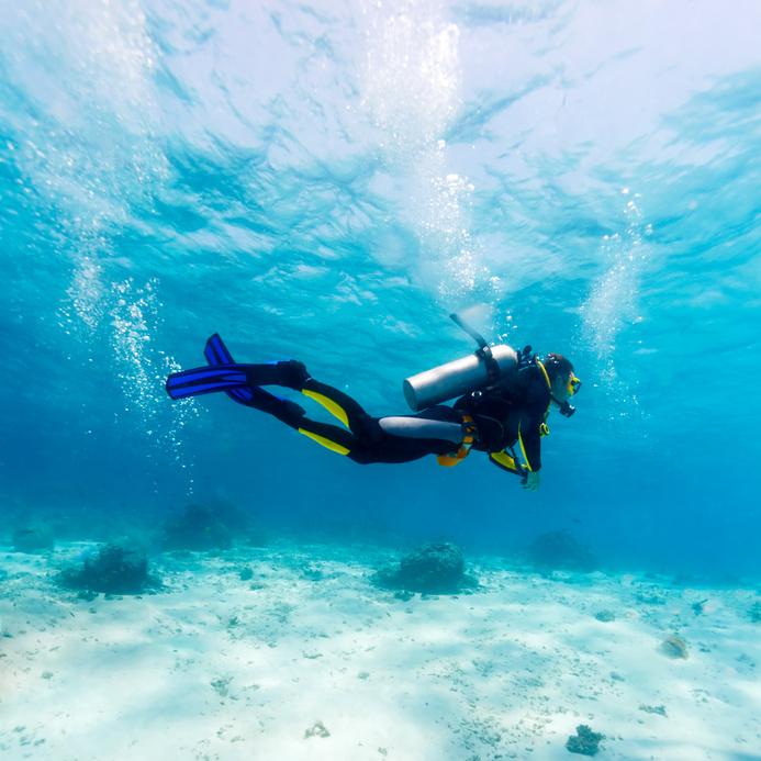 Dc diving