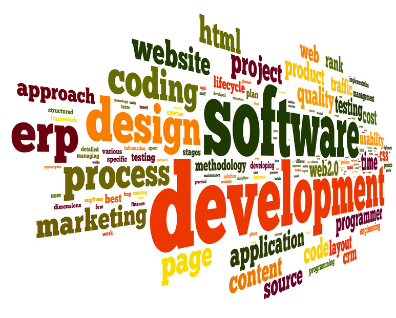 Software asset management program