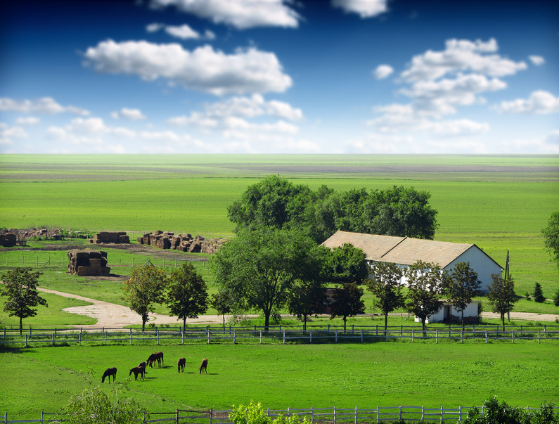 Colorado horse property