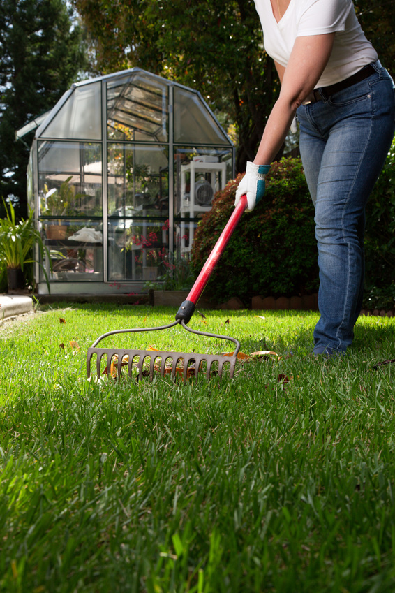 Organic lawncare treatment