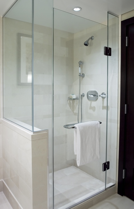 Michigan frameless glass shower doors