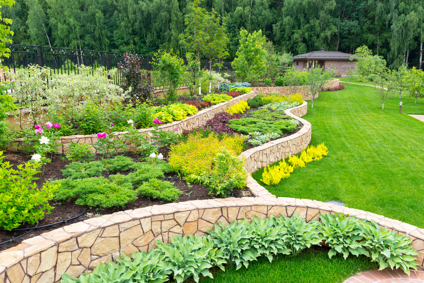 Types of landscape design services