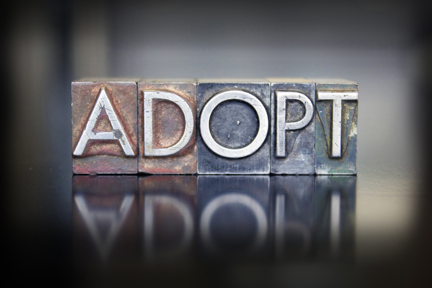 Adoption programs