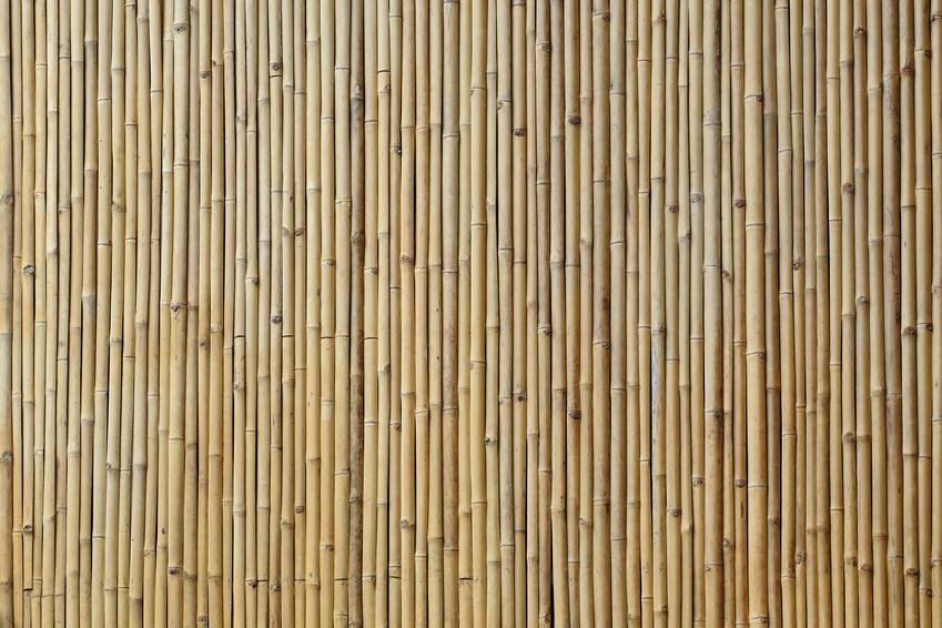 Best bamboo flooring brands
