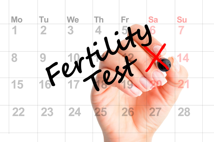 Michigan comprehensive fertility center