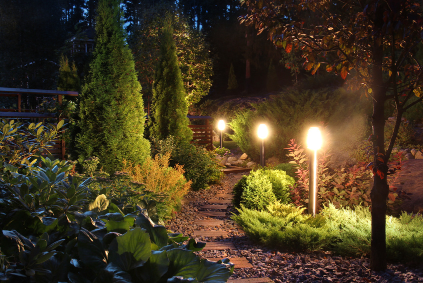 Ny landscape lighting