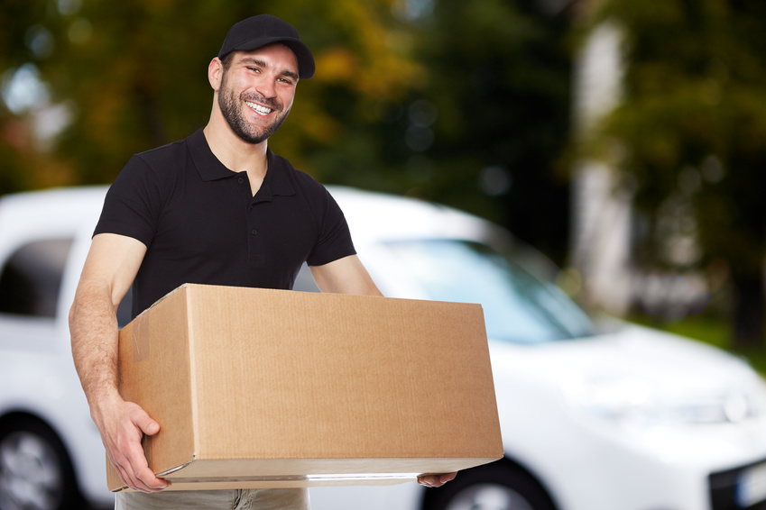 Expedited domestic shipping services