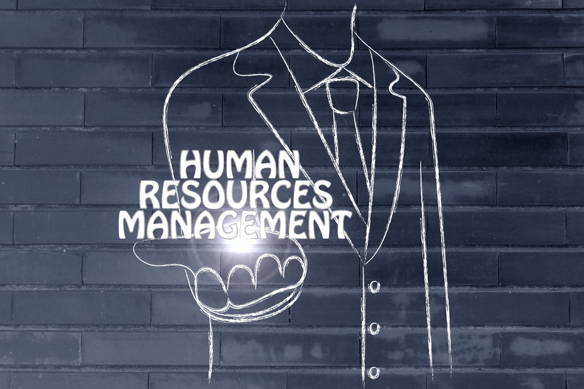 Human resources consultant