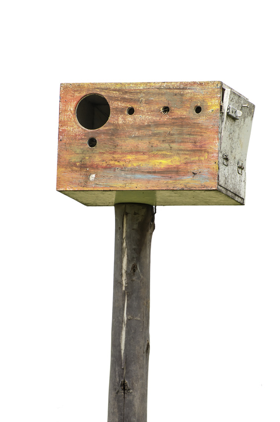 nesting boxes for sale