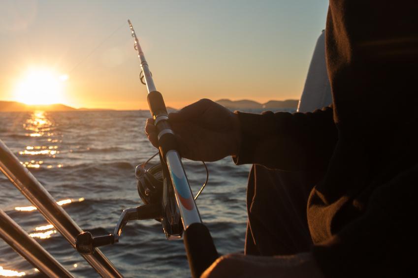 Fishing charter san diego