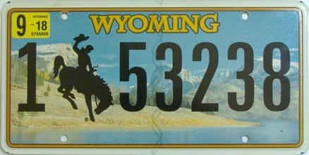 2018 Wyoming (Single) license plate for sale