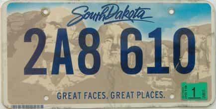 2019 South Dakota (Single) license plate for sale