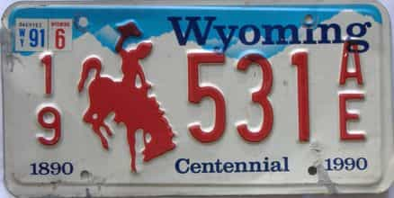 1991 Wyoming (Single) license plate for sale