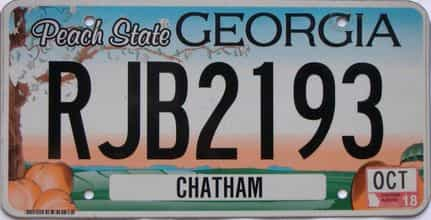 2018 Georgia Counties (Chatham) license plate for sale