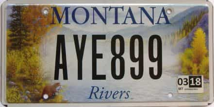2018 Montana  (Single) license plate for sale