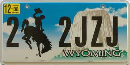 2008 Wyoming  (Single) license plate for sale