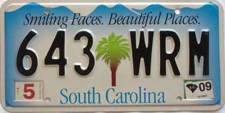 2009 South Carolina license plate for sale