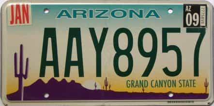 2009 Arizona license plate for sale