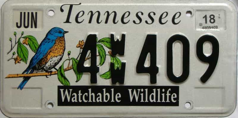 2018 Tennessee license plate for sale
