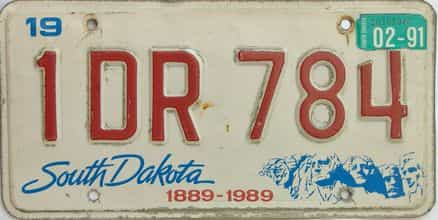 1991 South Dakota  (Single) license plate for sale