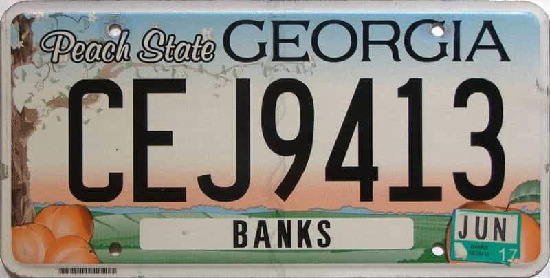 2017 Georgia Counties (Banks) license plate for sale