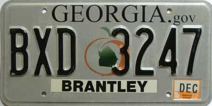 2012 Georgia Counties (Brantley) license plate for sale