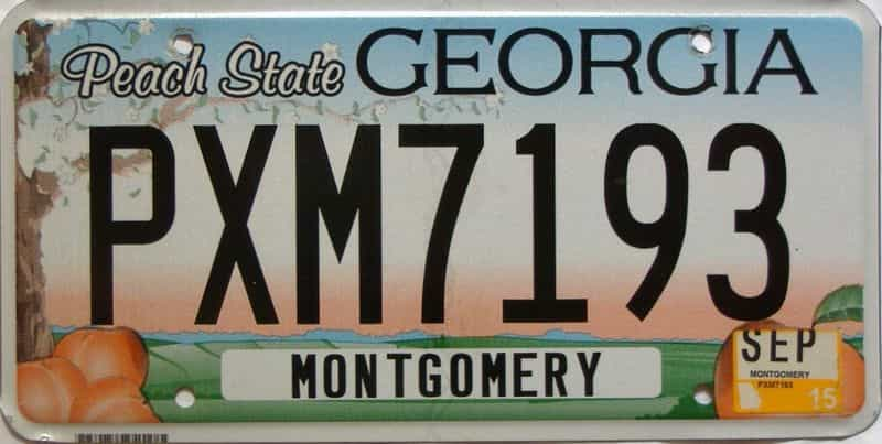 2015 Georgia Counties (Montgomery) license plate for sale