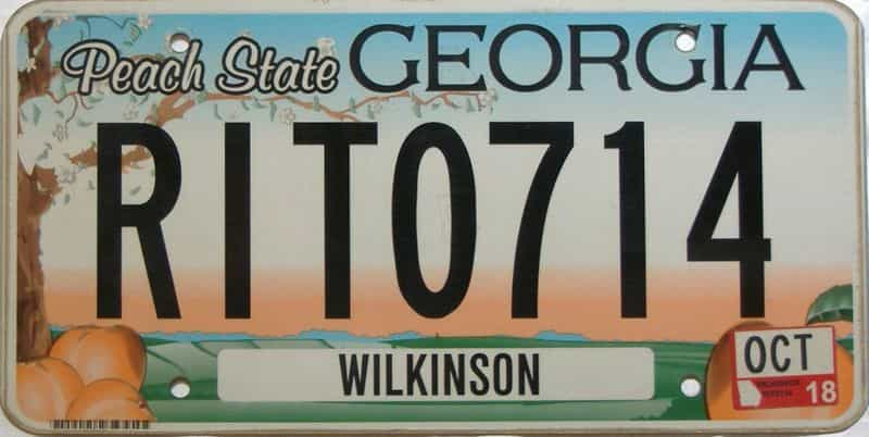2018 Georgia Counties (Wilkinson) license plate for sale