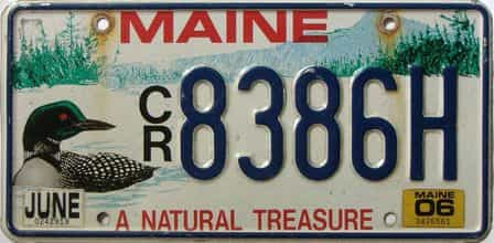 2006 Maine  (Single) license plate for sale
