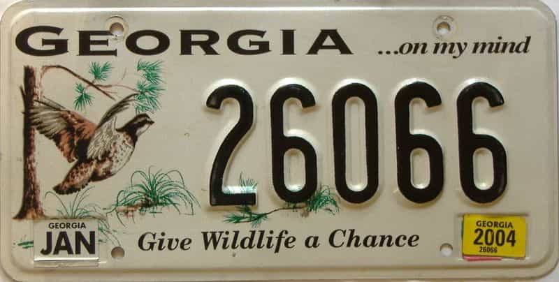 2004 Georgia license plate for sale