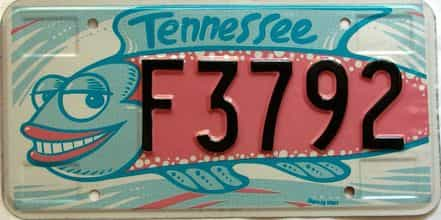 Tennessee license plate for sale