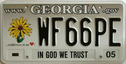 2005 Georgia license plate for sale