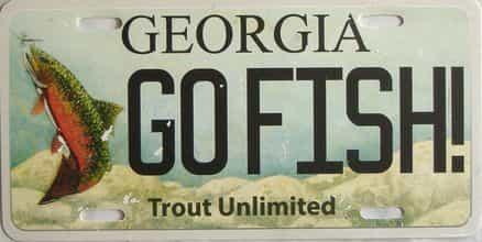 Miscellaneous  (Plastic) license plate for sale