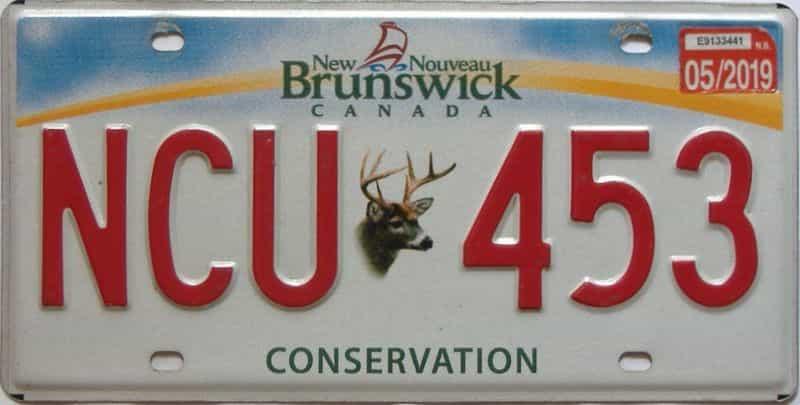 2019 New Brunswick license plate for sale