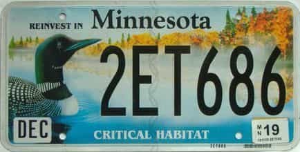 2019 Minnesota  (Single) license plate for sale