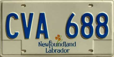 Newfoundland license plate for sale